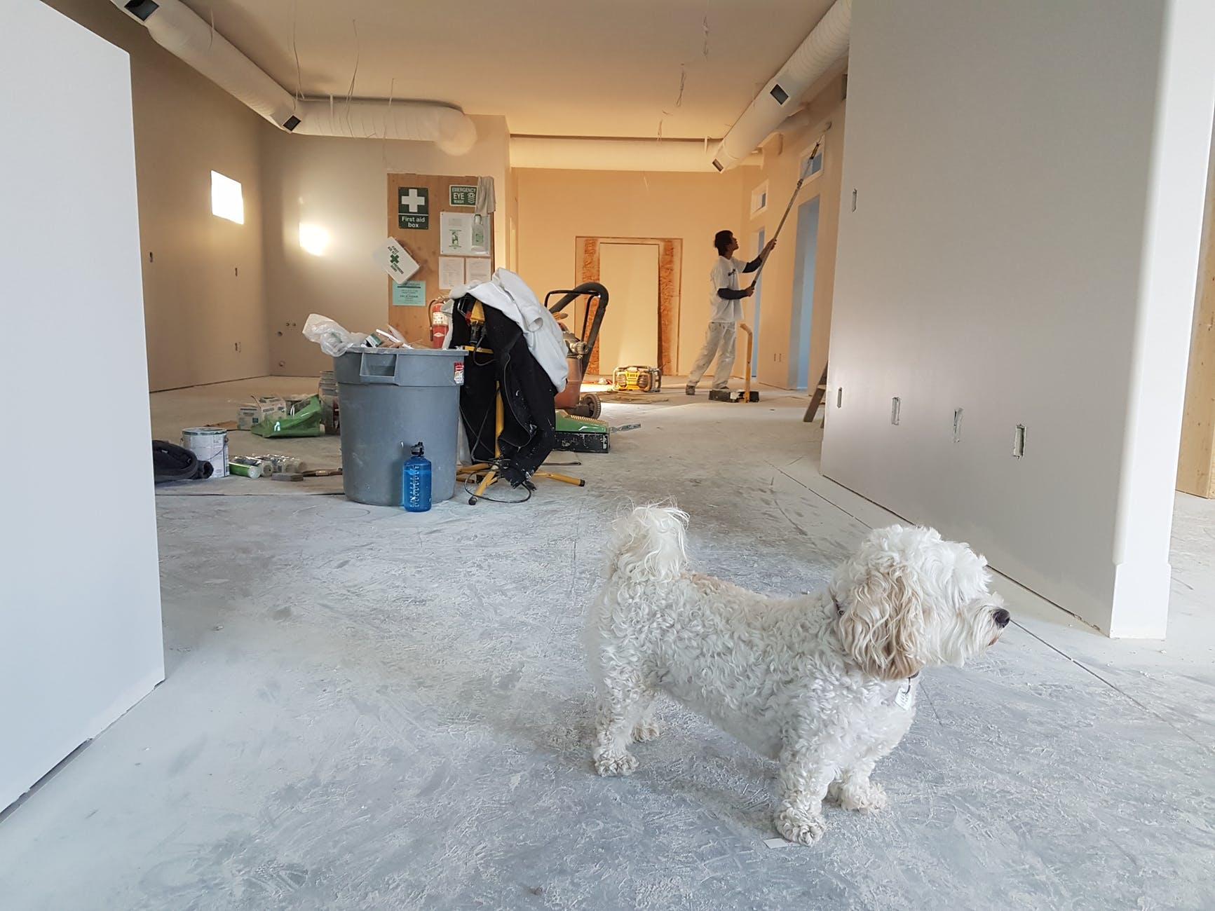 Жилищная «мистификация»: как коммерческое помещение превратить в квартиру?